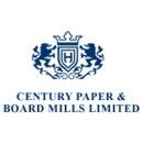 century paper