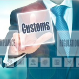 Customs Law Services