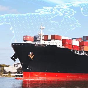 International Trade Laws Advisory